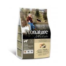 Pronature Holistic (Пронатюр Холистик) с океанической белой рыбой и диким рисом  для пожилых собак фото