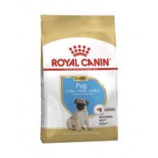 Royal Canin Puppy Pug фото