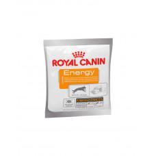 Royal Canin Energy фото