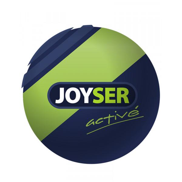Joyser Active Ball ДЖОЙСЕР МЯЧ игрушка для собак фото