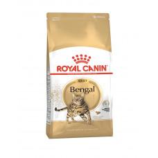 Royal Canin Bengal Adult фото