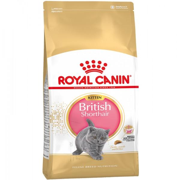 Royal Canin Kitten British Shorthair фото