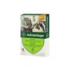 Bayer Advantage для кішок (до 4 кг.) фото