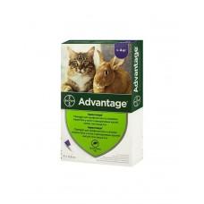 Bayer Advantage для кішок (4-8кг) фото